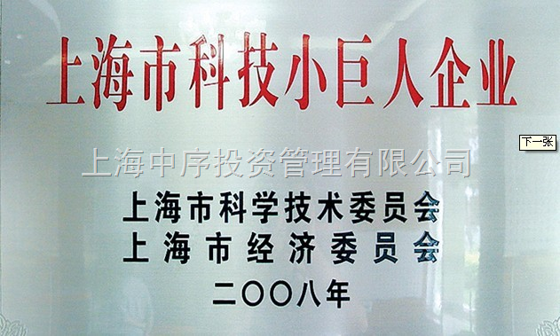 上海市科技小巨人